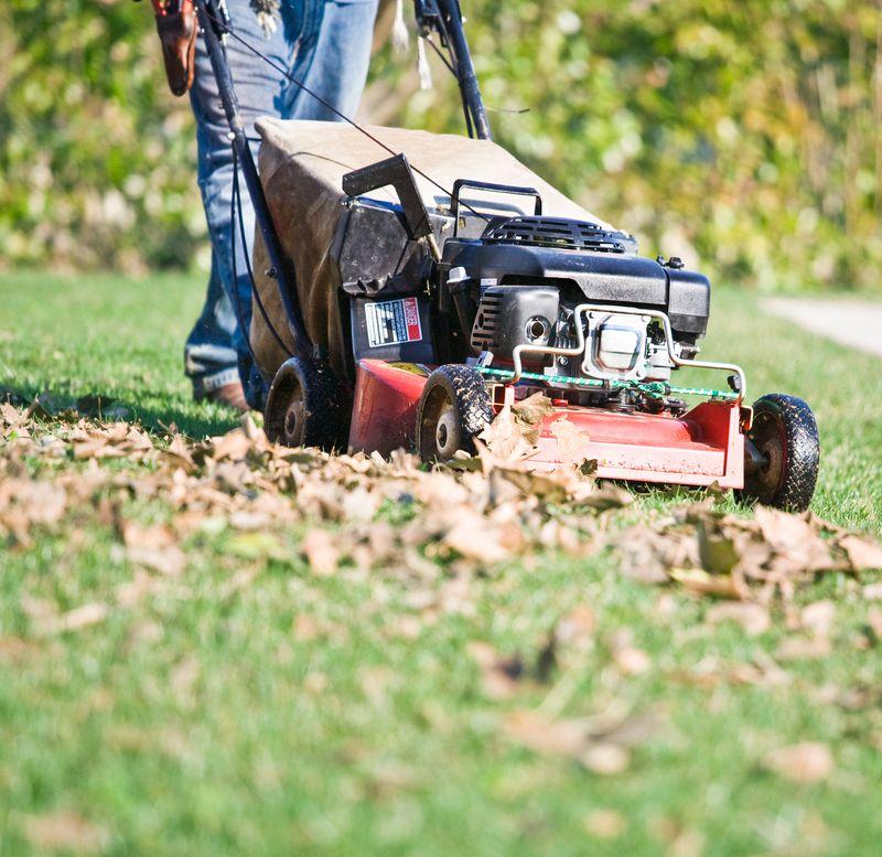 Fall 2021 Landscaping, Fall prep, mulching mower