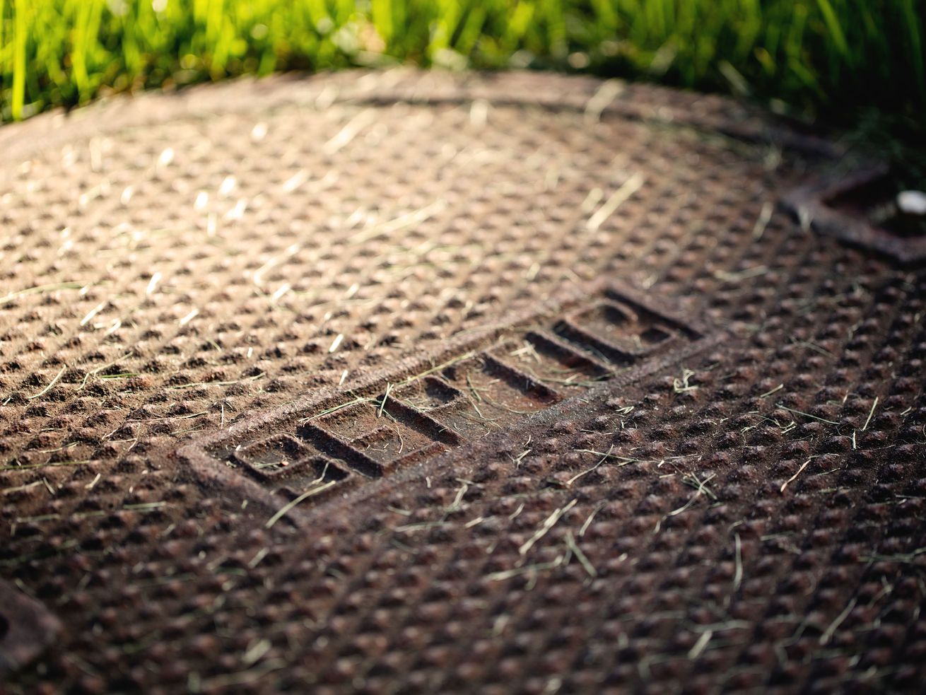 """The man hole cover in a bed of grass, the cover has the word """"spetic"""" on it."""